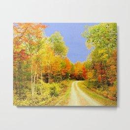 Fall Colors Maine Metal Print