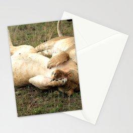 Stuffed Stationery Cards