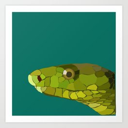 Green Mamba Art Print