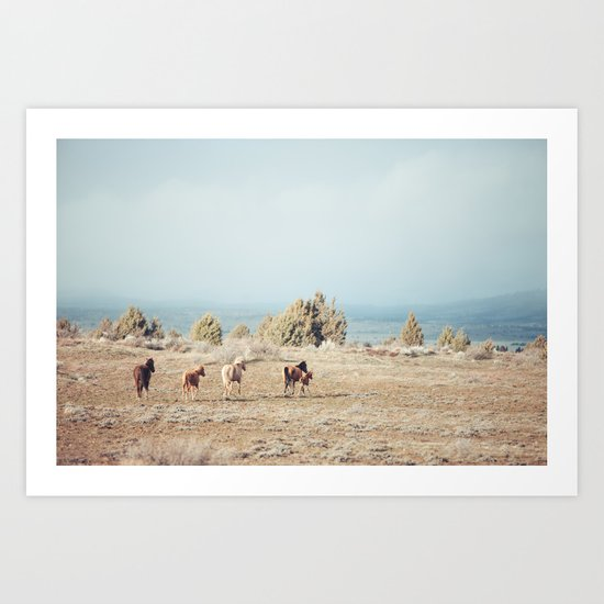 Oregon Wilderness Horses Art Print