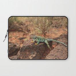 Collared Lizard Resting on the Rocks in Arizona Laptop Sleeve