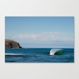 Southern Reef Canvas Print