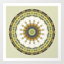 Mandalas from the Heart of Peace 5 Art Print