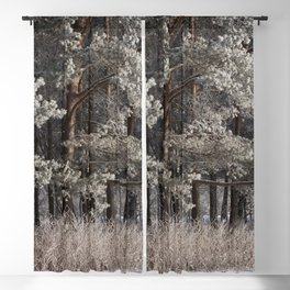 Snowy Path by Winter Woods Blackout Curtain