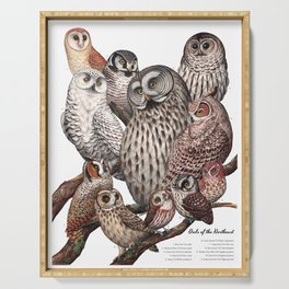 Owls of the Northeast Serving Tray