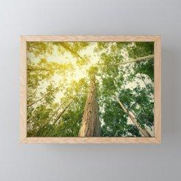 The eucalyptus Framed Mini Art Print