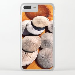 Sand Dollars Collected in Old Orchard Beach, Maine Clear iPhone Case
