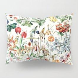 Adolphe Millot - Fleurs D - French vintage poster Pillow Sham