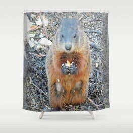 Ground Hog Shower Curtain