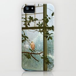 A Trip to the Zoo 3 iPhone Case