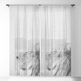 Lion Portrait - Black & White Sheer Curtain