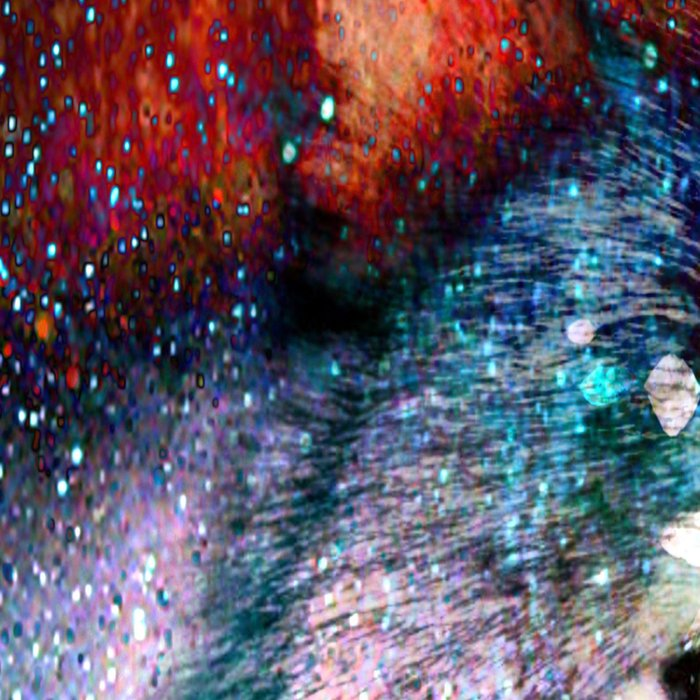 wolf universe Leggings