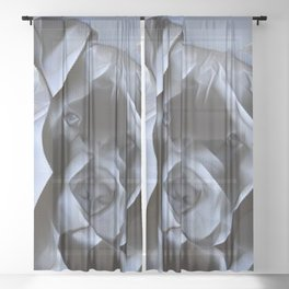 blue nose pit bull painting Sheer Curtain