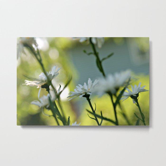 More Flowers Metal Print