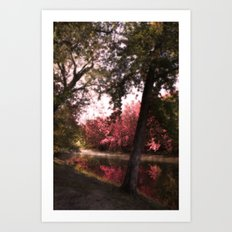 Into Morning Art Print