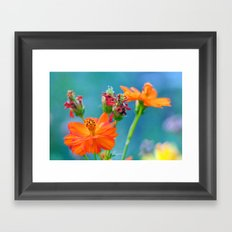 Ginger Dahlias - why not 53 Framed Art Print
