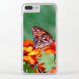 Gulf Fritillary On Zinnia Clear iPhone Case