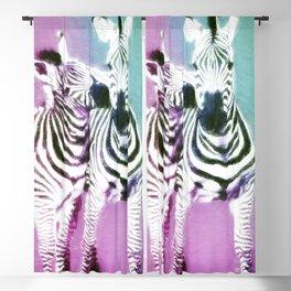 Zebra Kisses Blackout Curtain