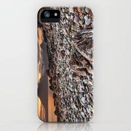 Beach lac Ecosse 4 iPhone Case