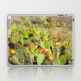 green cactus with red and yellow flower texture background Laptop & iPad Skin