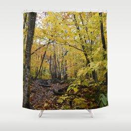 Woods 3 Shower Curtain