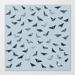 Pigeons Doing Pigeon Things Canvas Print