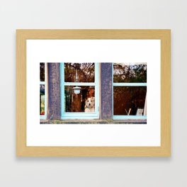 Dog at the window Framed Art Print
