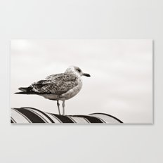 I'm waiting for you Canvas Print