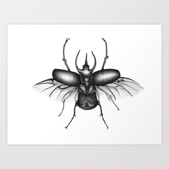 Beetle Wings Art Print