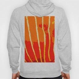 Orange Bongo Stripes Hoody