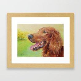 IRISH RED SETTER Dog portrait Cute pet Painting Framed Art Print