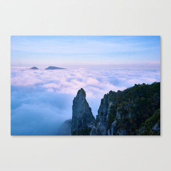 Nature's Cotton Candy Canvas Print