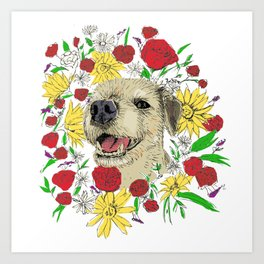 Lilly in Colour - Border Terrier Art Print
