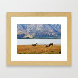 Jackson Lake, Wyoming II Framed Art Print