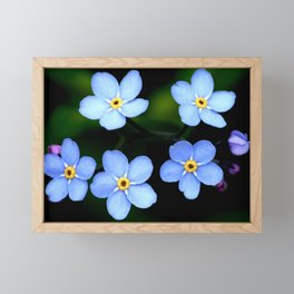 Forget-me-not Tiny Blue Flowers #decor #society6 Framed Mini Art Print