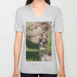 Single adult sheep eating grass Unisex V-Neck