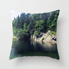 Water Hole Throw Pillow