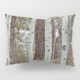 Trail Through Quaking Aspen Pillow Sham