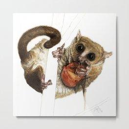Munching Mouse Lemur Metal Print