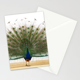 Peacock Stationery Cards