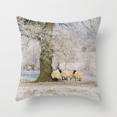 Sheep gathered under a tree covered in a thick hoar frost. Norfolk, UK. Throw Pillow