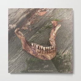 Catacomb Culture - Mandible / Jaw Bone Metal Print