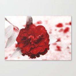 Rosa Sangue Canvas Print