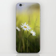 Daisy Landscape iPhone & iPod Skin