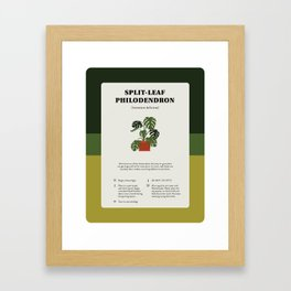 Split-Leaf Philodendron Care Framed Art Print