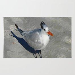 Siesta Key Tern Rug