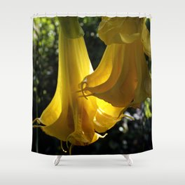 Backlit Datura Shower Curtain
