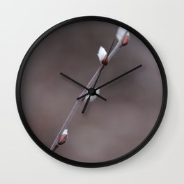 Spring II Wall Clock