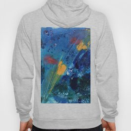 Views of Rainbow Coral, Tiny World Collection Hoody