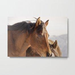 Western Horse Metal Print